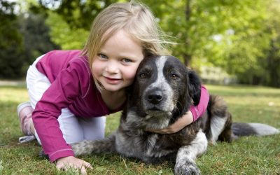 Three Tips to Keep Your Dog Healthy and Vital